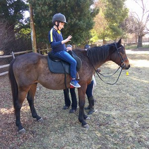 Equine Assisted Therapy introduced